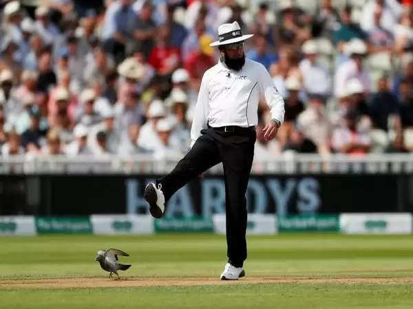 न्यूजीलैंड-पाकिस्तान एकदिवसीय श्रृंखला में अंपायरिंग करेंगे अलीम डार, अहसान रजा