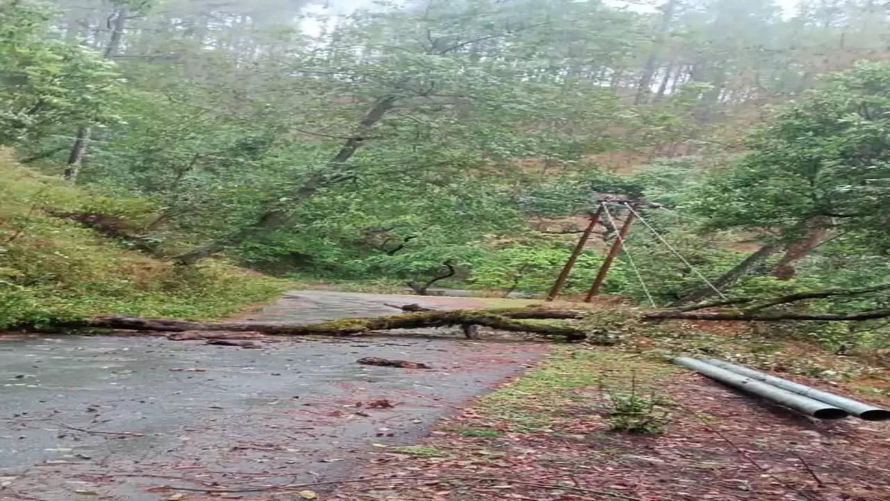Newspoint24 / newsdesk Uttarakhand: NH closed at many places due to heavy rains